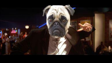 John Travolta is a Pug.